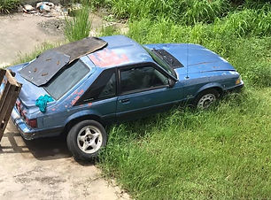 Mustang 5.0 1991.jpg