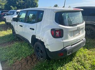 Jeep Renegade 2019.jpg
