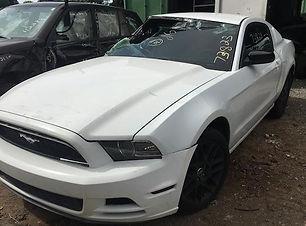 Mustang 2014.jpg