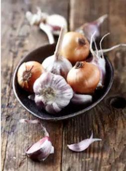 fire cider - master tonic garlic