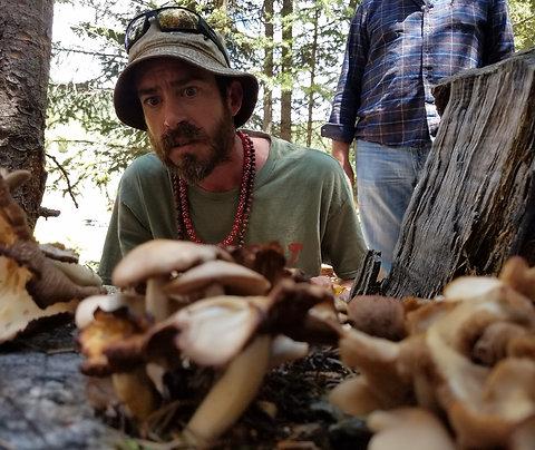 Mushroom Hunting 101 w/ Mushroom Mike