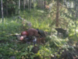 Advanced Wilderness Survival Training