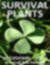 Survival Plants by Cattail Bob