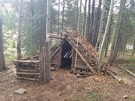 Primitive Shelter Building Single Day Class