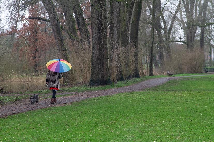 Genneper Park, Eindhoven