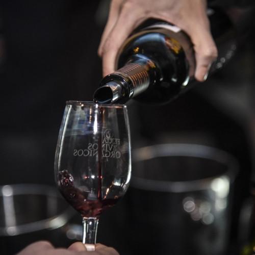 Feria de Vinos Orgánicos