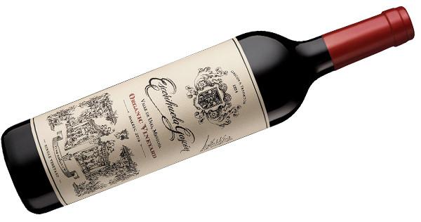 Escorihuela Gascón Organic Vineyard Malbec