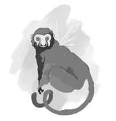 le creature di Darwin
