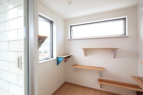 横須賀久里浜の家キャットウォーク