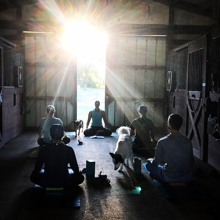 Barn Yoga at Erika West Dressage