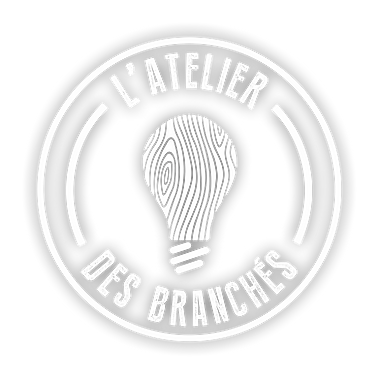 logo_BLANC_SANS_FOND_OMBRE.png
