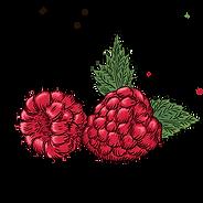 Raspberry_1_edited.png