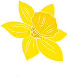 Daffodil_Flower.png