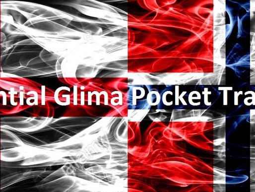 The Essential Glima Fighter's Pocket Translator