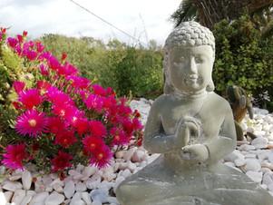 Buda garden