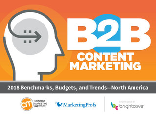 Insights Into The World of Content Marketing