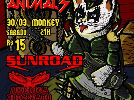 Bandas SUNROAD E AMERICA BOULEVARD tocam em Goiânia para show beneficente de rock em prol dos animai