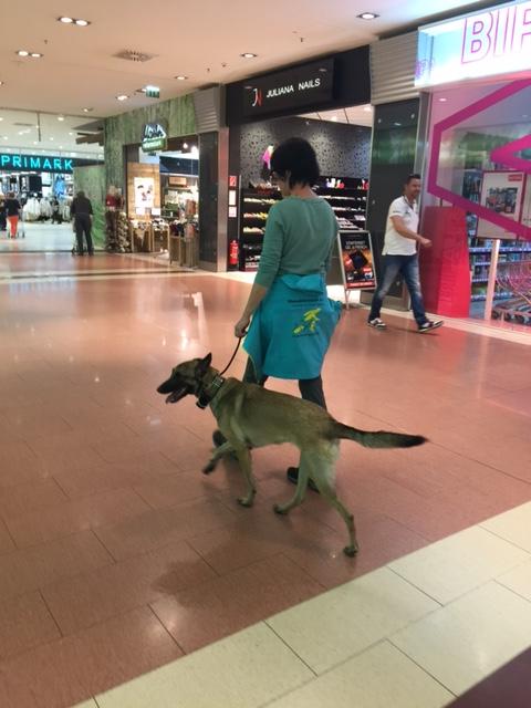 Training im Einkaufszentrum
