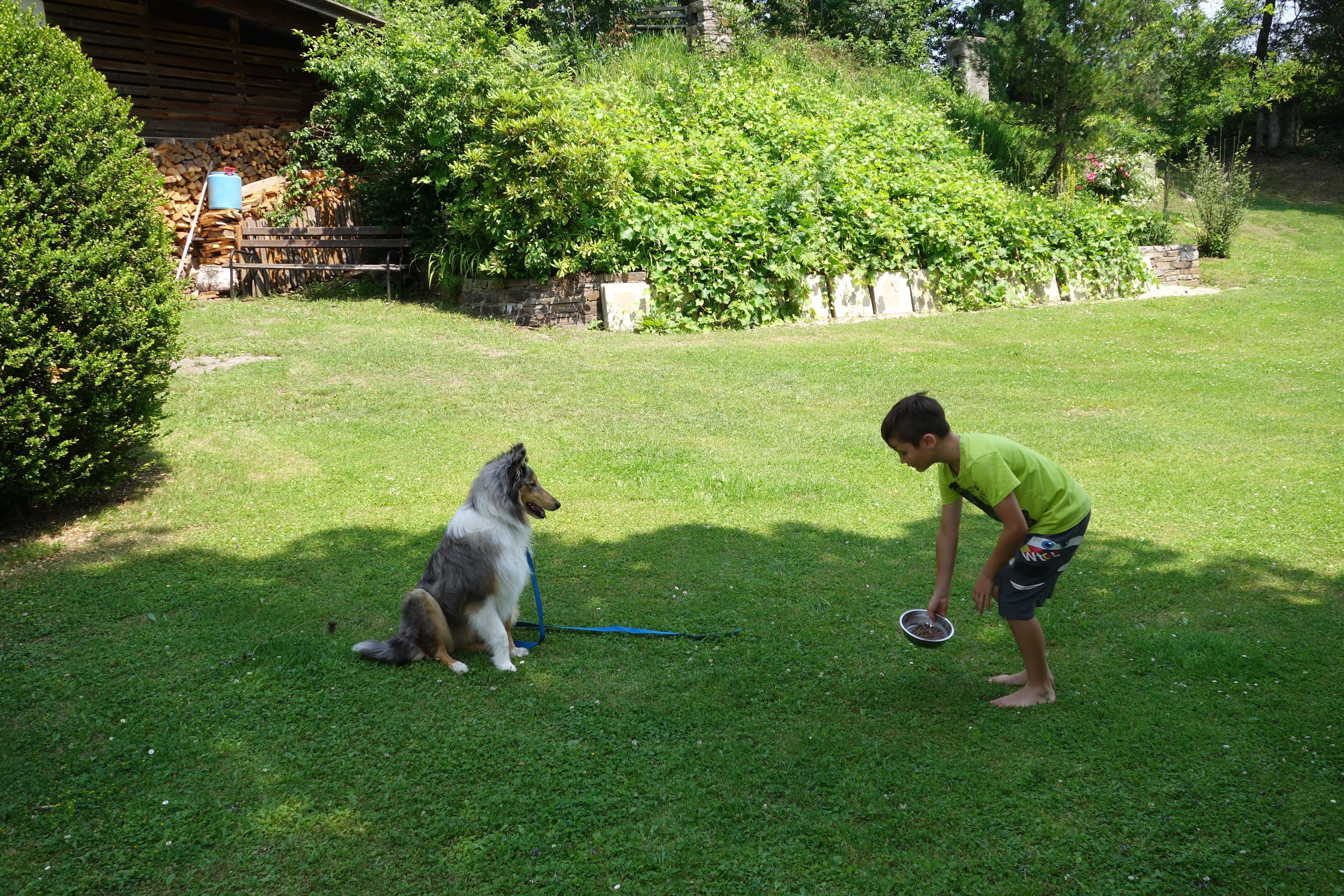 Yukon trainiert mit seinem Finn