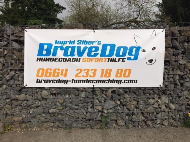 BraveDog Banner
