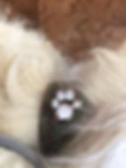 Halsband Schmuck Hund Pfote