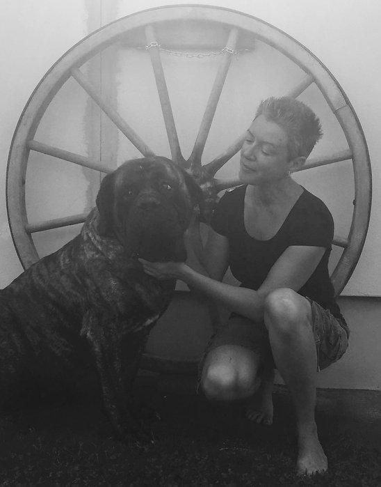 Der Hundecoach für Hund & Mensch