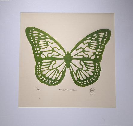 Metamorphis