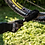 Thumbnail: Muc-Off Wheel & Compomemt Brush מברשת