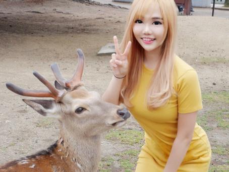 Things to do in Japan day 2: Nara deer park (Nara), Nishiki market, Fushimi Inari Shrine (Kyoto)