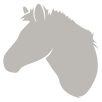 Horse Logo Silver.png