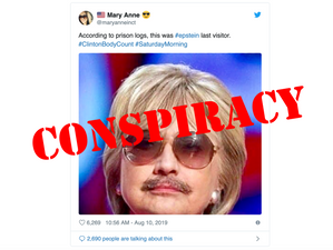 Twitter Story: Epstein Disinfo Spin Cycle