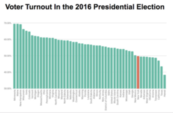 Voter Turnout in 2016 Electio