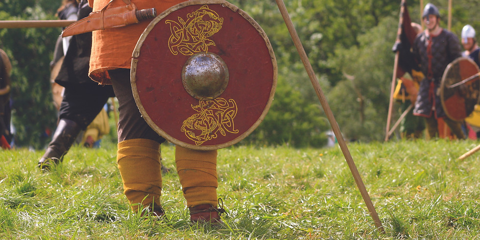 IN THE FOOTSTEPS OF THE VIKINGS