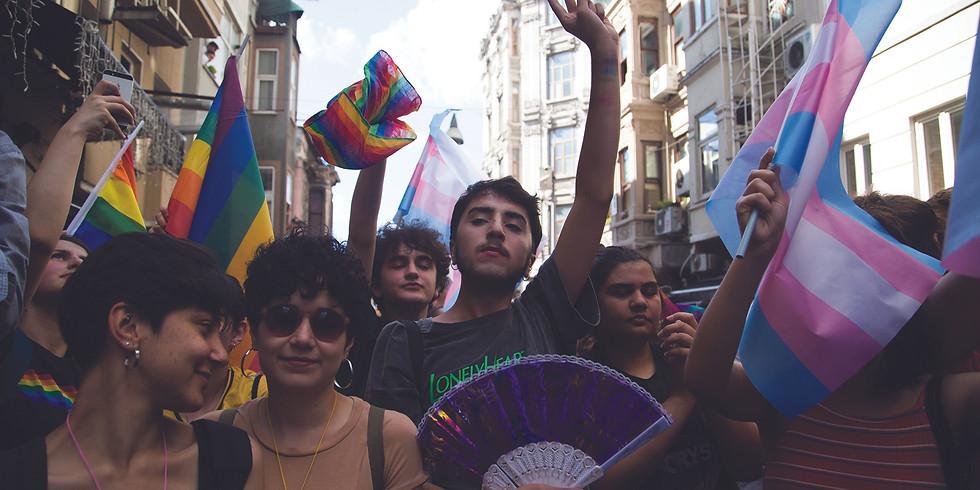THE LGBTI SITUATION IN TURKEY