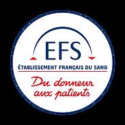 logos EFS.png