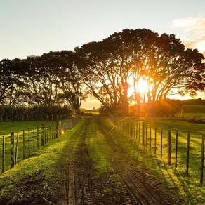 Bonnes pratiques agricoles et santé, tout ce qu'il faut savoir sur l'utilisation de nos sols