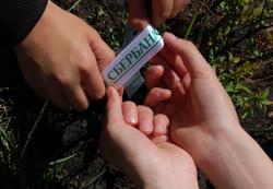 Пенза зеленый марафон