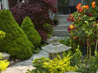 Гарантии на приживаемость растений и послепосадочный уход