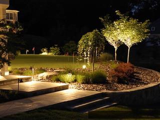 О чем надо помнить при создании сада.