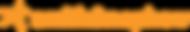 Logo Smith & Nephew.png