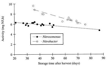 Elimination azote par Nitrosomonas et Nitrobacter - Lyveo