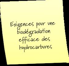 Conditions idéales pour une biodégradation efficace
