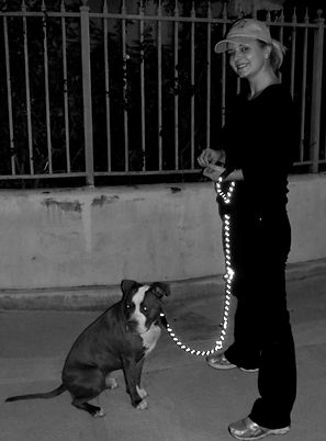 A happy dog trainer training a Pit Bull at night