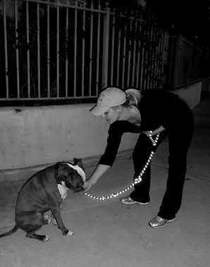 A dog trainer gently feeding a treat to a dog