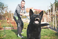 Aggressive dog is barking. Young man with angry black dog on the leash. .jpg