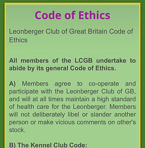 Code of ethics_edited.jpg