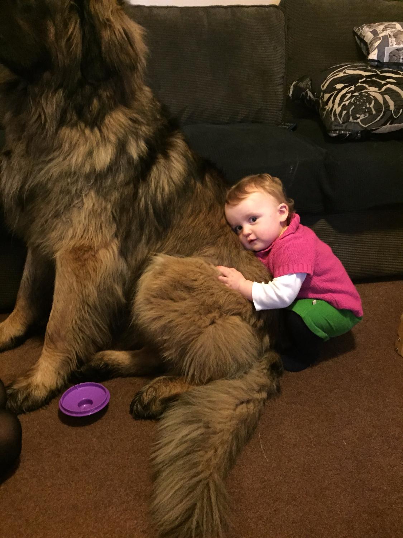 Odin & Izzy