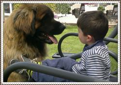 Lucas & Aslan