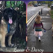 Luna & Darcy