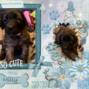 7. Milly